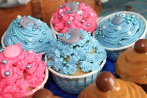 cupcakes-997545_1280